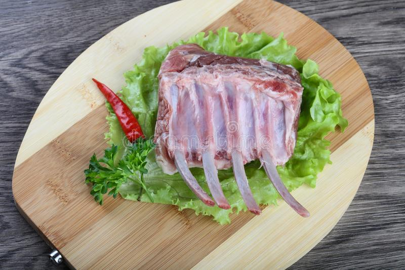 Lamb Frenched Rack royalty free stock photos