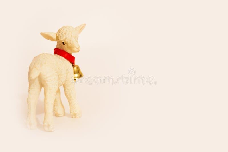 Lamb with stock photo