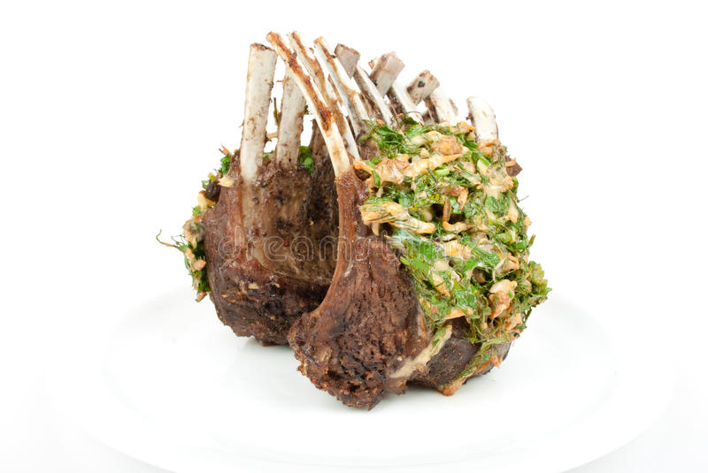 Lamb lion with thyme royalty free stock image