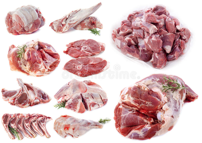 Lamb meat royalty free stock photos