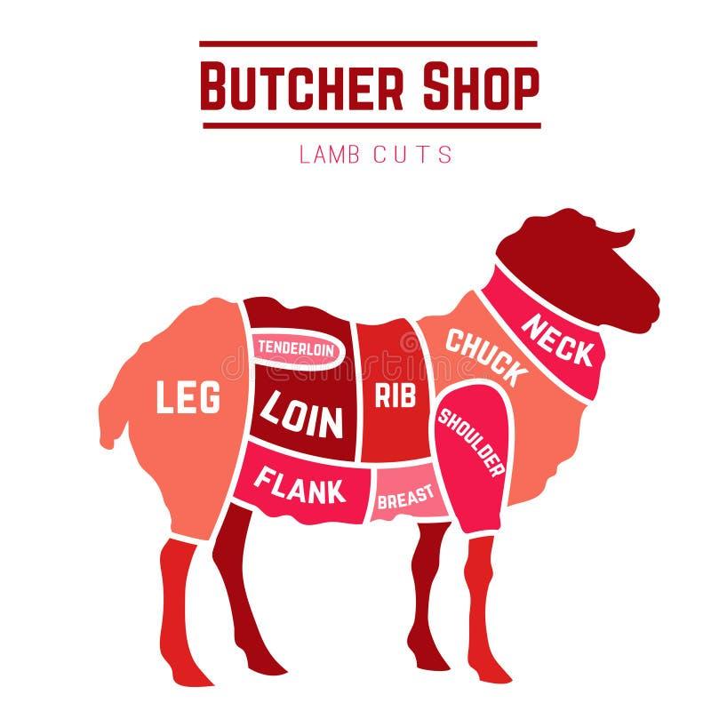 Lamb or mutton cuts diagram. Butcher shop. Vector illustration stock illustration