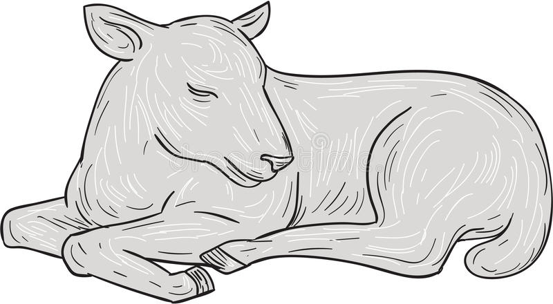 Lamb Sleeping Drawing. Drawing sketch style illustration of a lamb sleeping set on isolated white background royalty free illustration