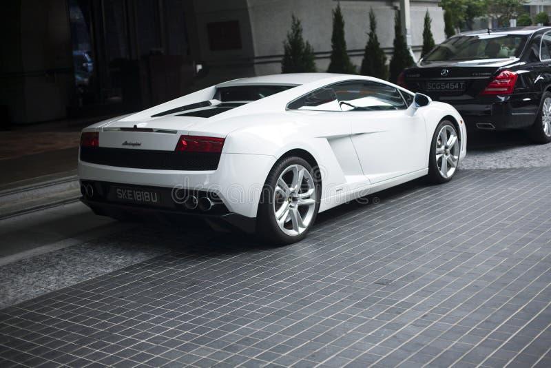 Lamborghini蝙蝠鱼2014白色 库存图片