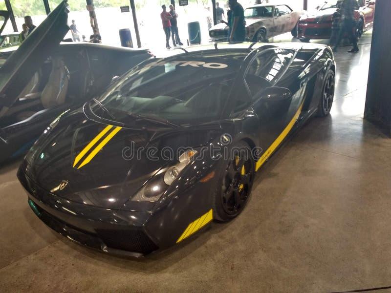 Lamborghini Gallardo royalty free stock photography
