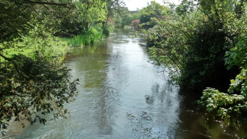 Lambourn river stock photography