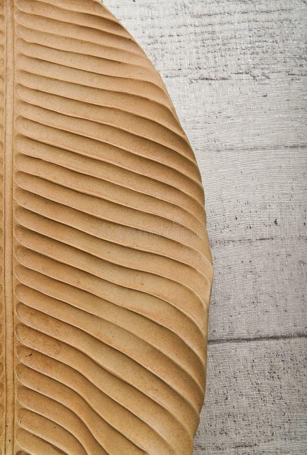 Lame à moitié sèche de banane d'isolement sur l'étage en bois photographie stock libre de droits