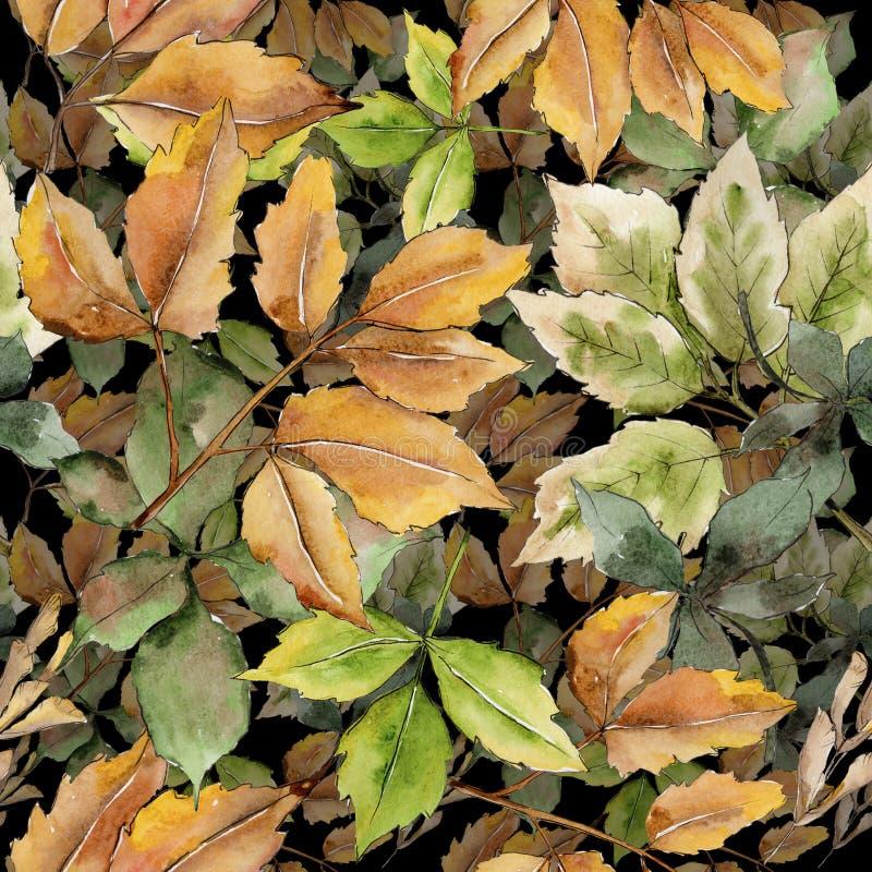 Lame d'érable d'isolement Feuillage floral de jardin botanique d'usine de feuille Modèle sans couture de fond Texture d'impressio illustration libre de droits