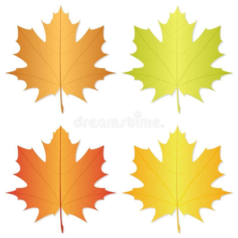 Lame d'automne illustration stock