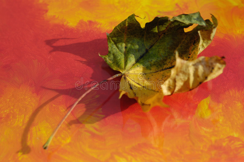Lame d'automne photo stock