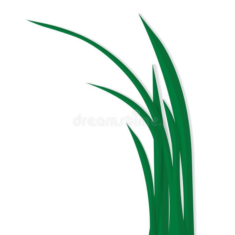 Lame di erba isolate su fondo bianco illustrazione di stock