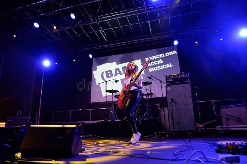 Lamente a faixa no concerto em BAM Festival fotografia de stock