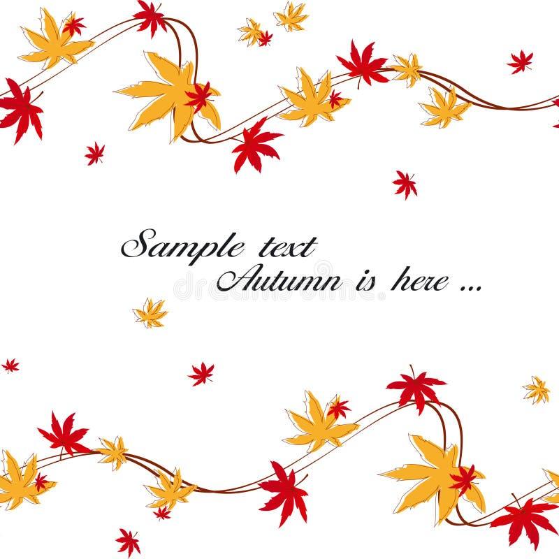 Lames colorées d'érable d'automne images libres de droits