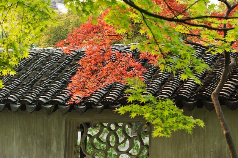 Lames d'érable et toit carrelé traditionnel photo libre de droits