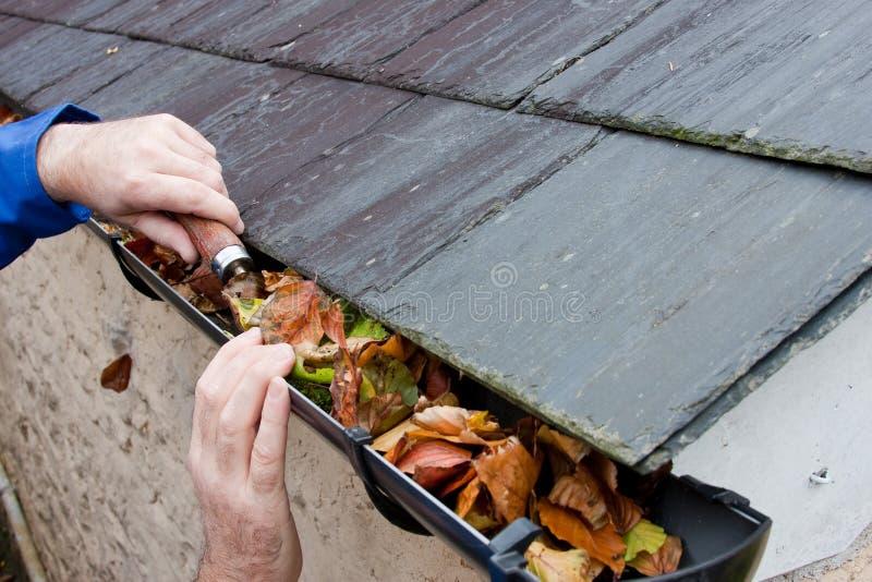 Lames d'automne d'effacement d'ouvrier de creux de la jante image libre de droits