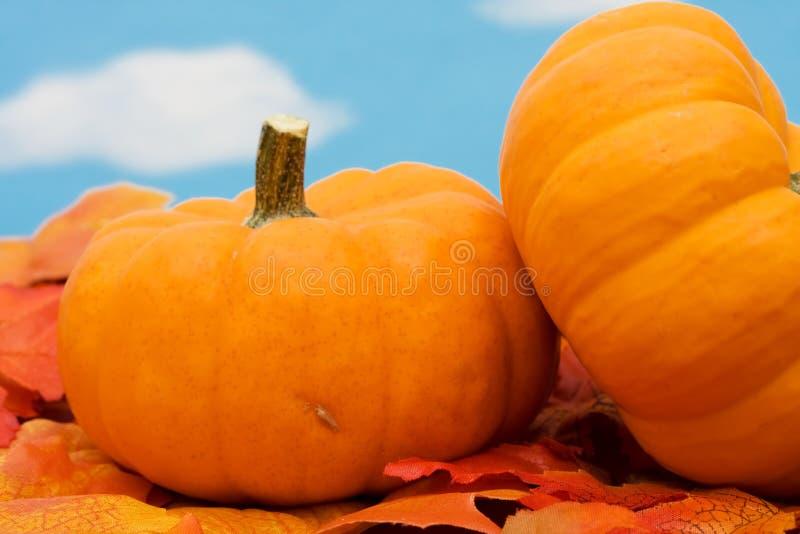 lames d'automne de cadre photo libre de droits