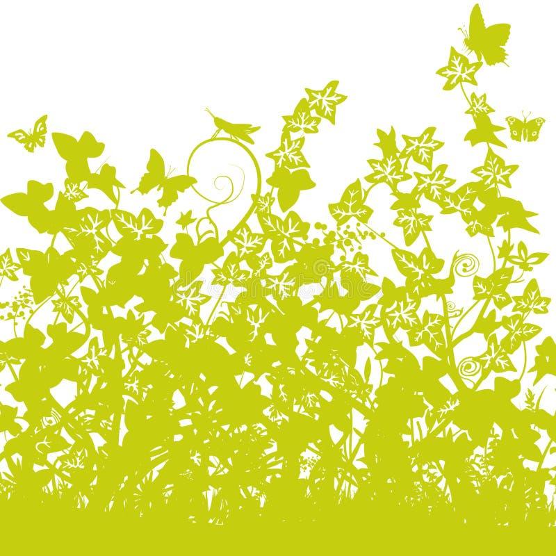 Lames d'herbe avec le lierre dense illustration stock