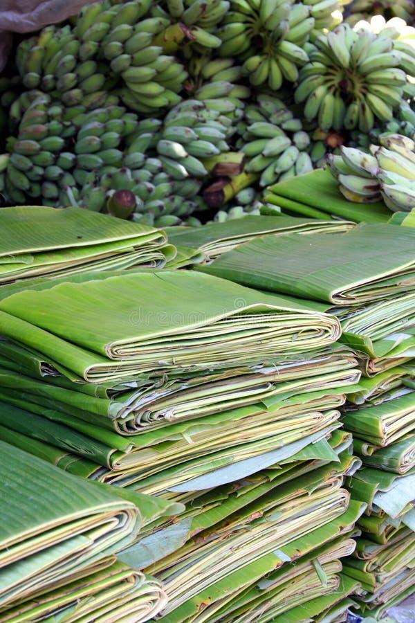Lames de banane photographie stock