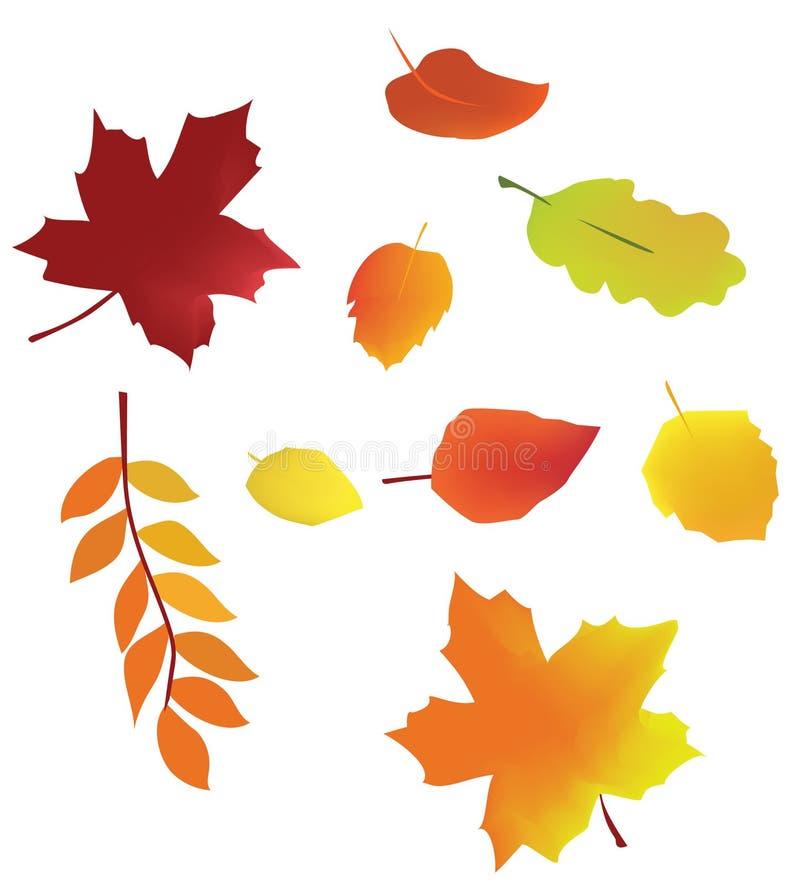 Lames de vecteur d'automne photos stock
