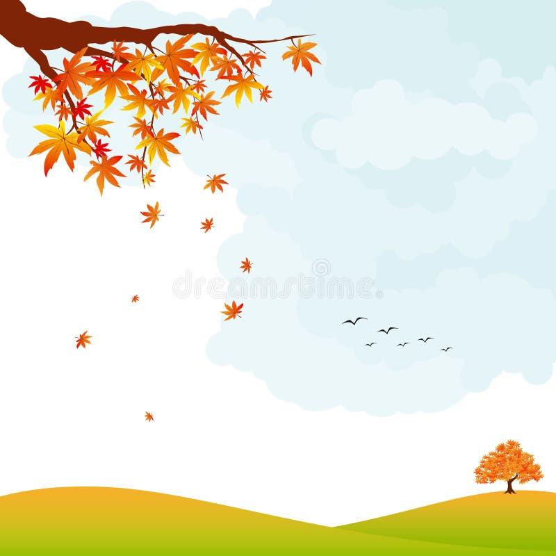 Lames et arbre colorés d'érable d'horizontal d'automne images stock
