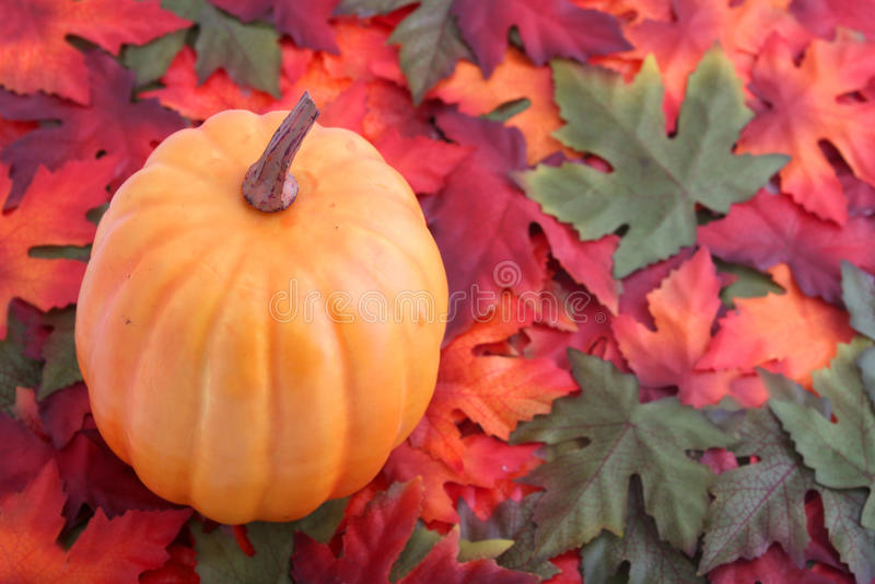 Lames et potiron d'automne images stock