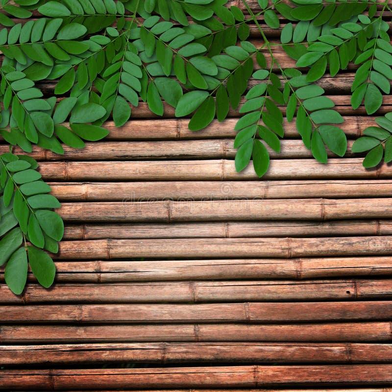 Lames sur le fond en bois images stock