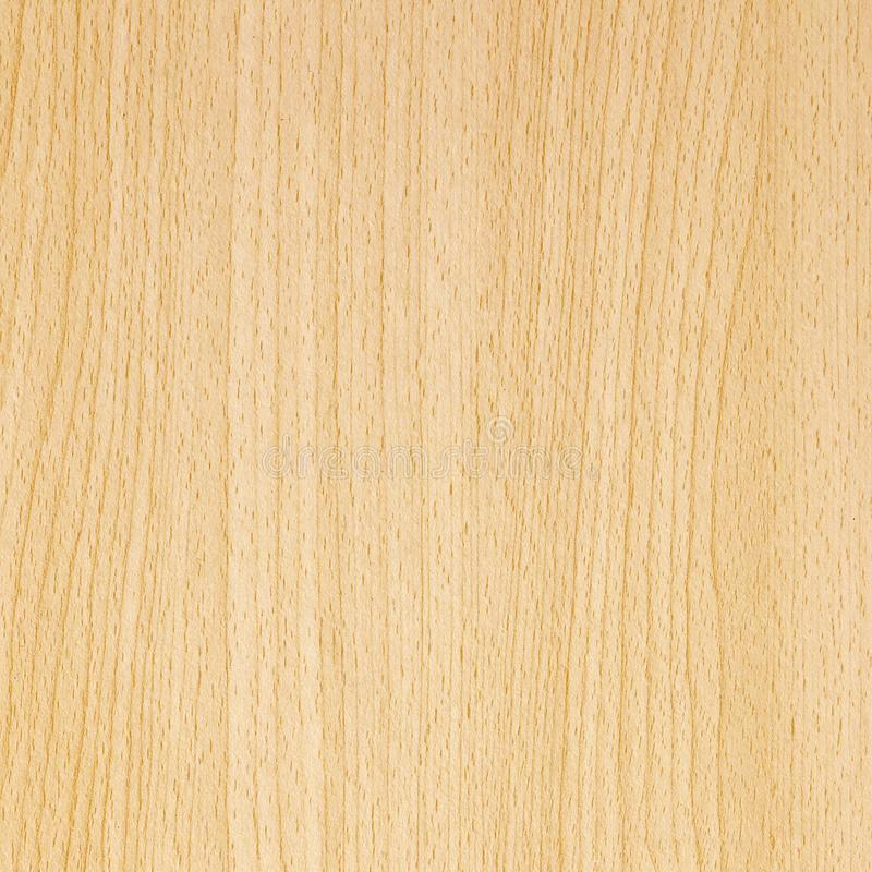 Laminate parquet floor texture background. The laminate parquet floor texture background royalty free stock photography