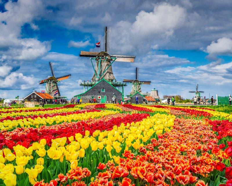Laminatoi di vento olandesi immagini stock libere da diritti