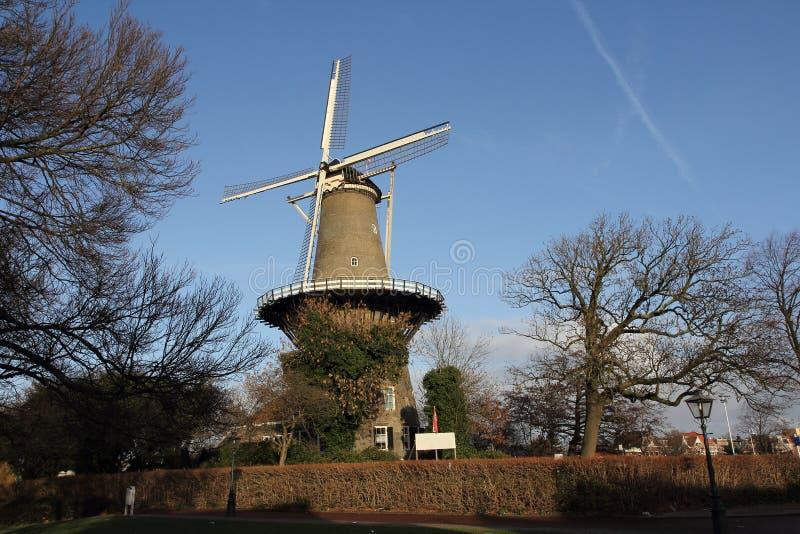 Laminatoio olandese Leida della torretta immagini stock