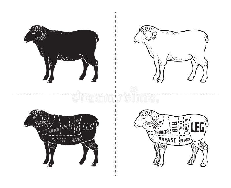 Lamm- eller fårköttsnittdiagram Slaktare Shop stock illustrationer