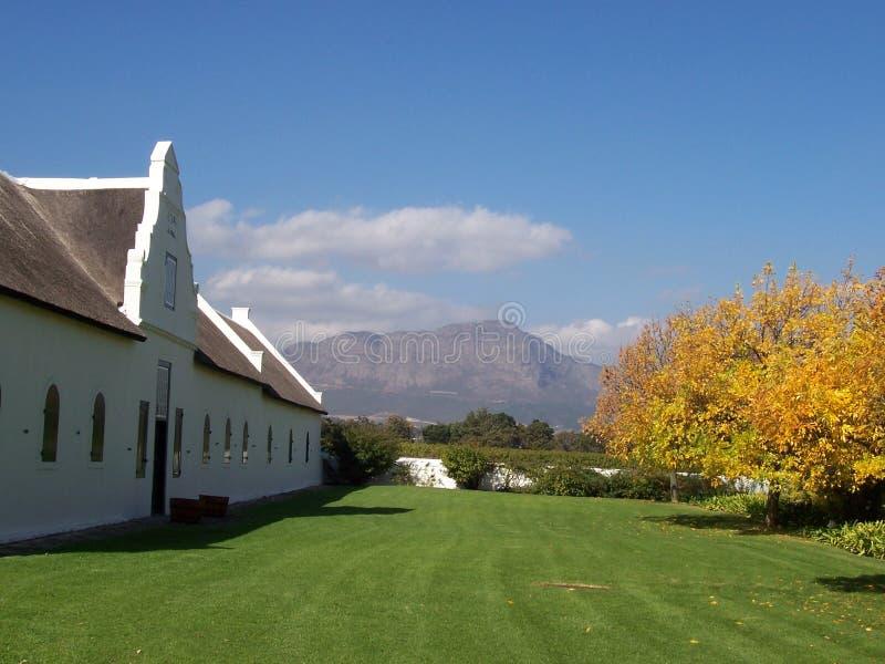 Download Lamotte Vineyards Cape S.Afric Stock Image - Image: 2378361