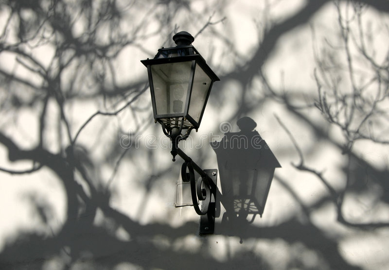 Download The lamp stock image. Image of branch, architecture, trees - 5623
