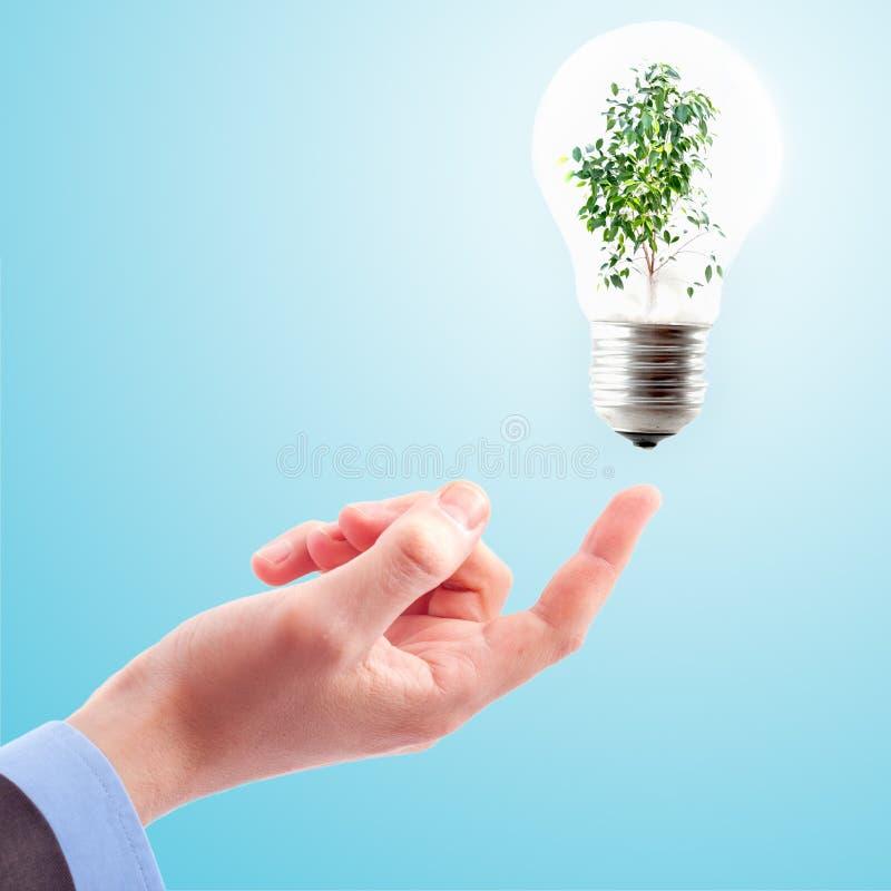 Lamp en installatie stock afbeeldingen