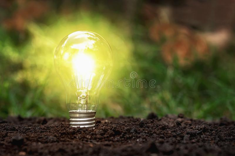 Lamp on the ground according to the concept or concept of energy saving. Sustainability, innovation, development, idea, bulb, light, nature, soil, green stock photo