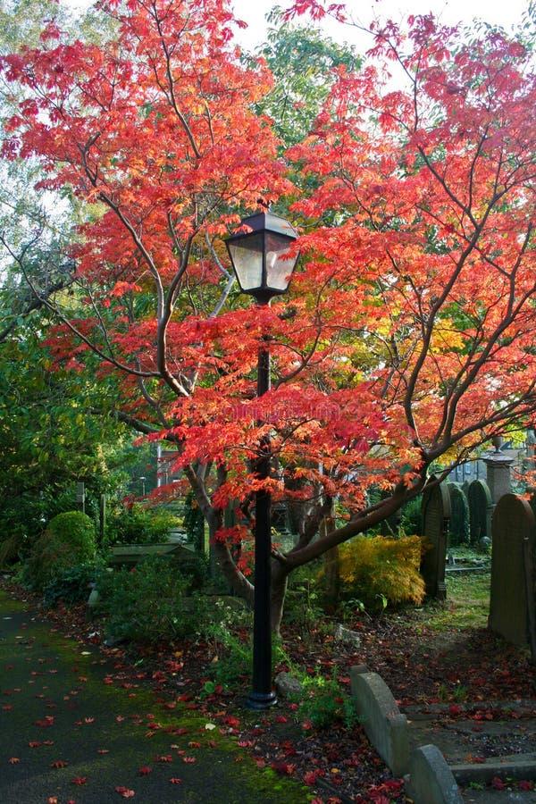 Lamp in kerkhof stock afbeeldingen