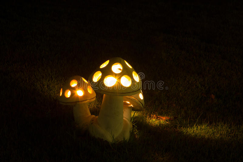 Lamp at Night garden stock images