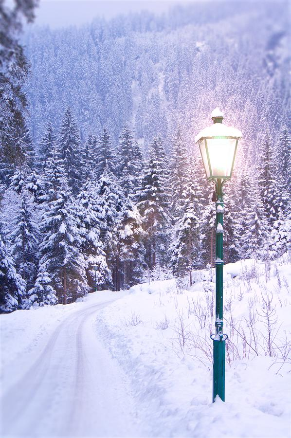 Lamp Post in Winter. Like in Narnia royalty free stock photo