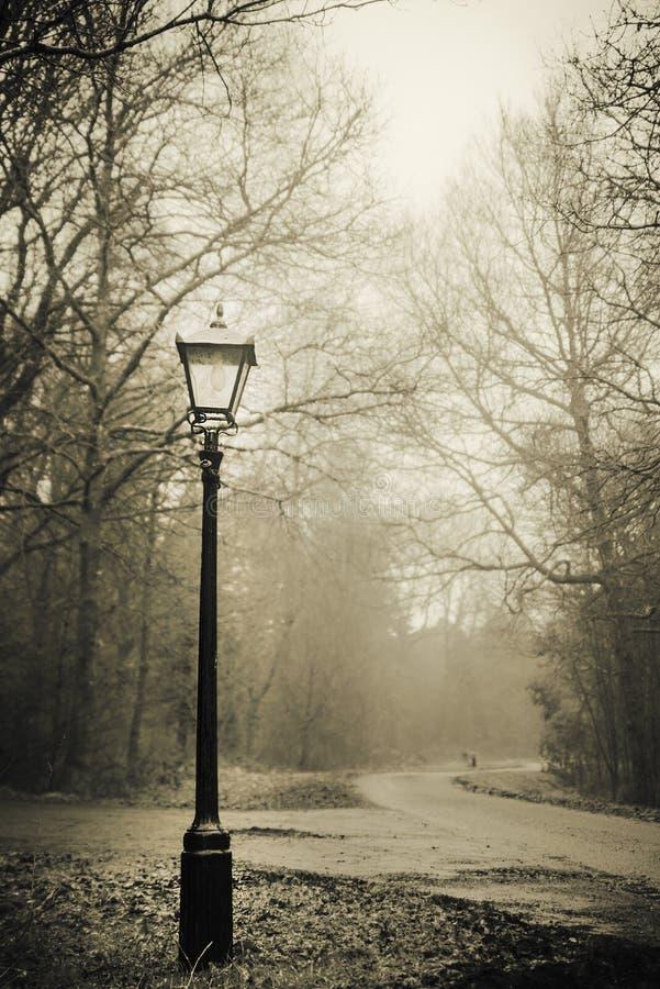 Lamp postlandschap stock foto
