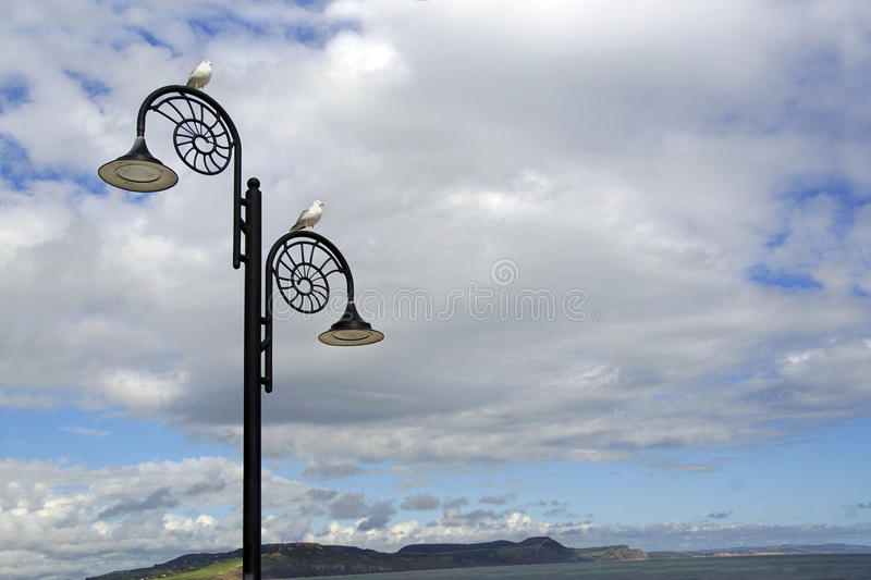 Lamp posts. Amonite fossil shaped lamp post lights line the beach in Dorset where fossils are found with a seagull on each light royalty free stock photography