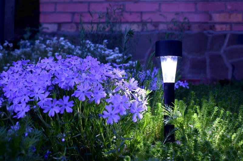 Lampa på solpanelen i trädgården arkivbild