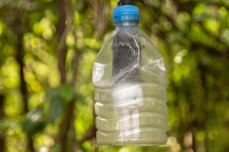 Lampada con la Animale-bottiglia come paralume fotografia stock libera da diritti