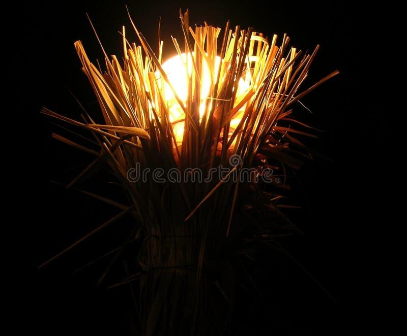 Download Lampada Con Spazio Per Testo Fotografia Stock - Immagine di oggetto, luce: 211640