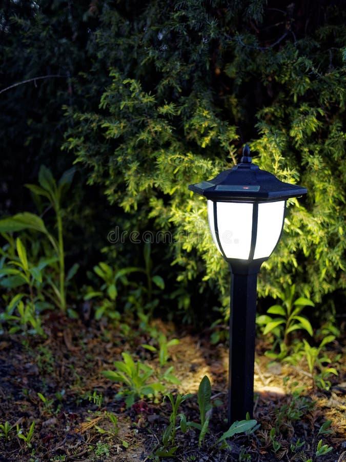 Lampada del giardino nella notte immagini stock