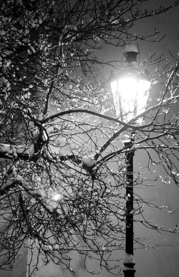 Lampada di via sola sulla notte di inverno fotografie stock
