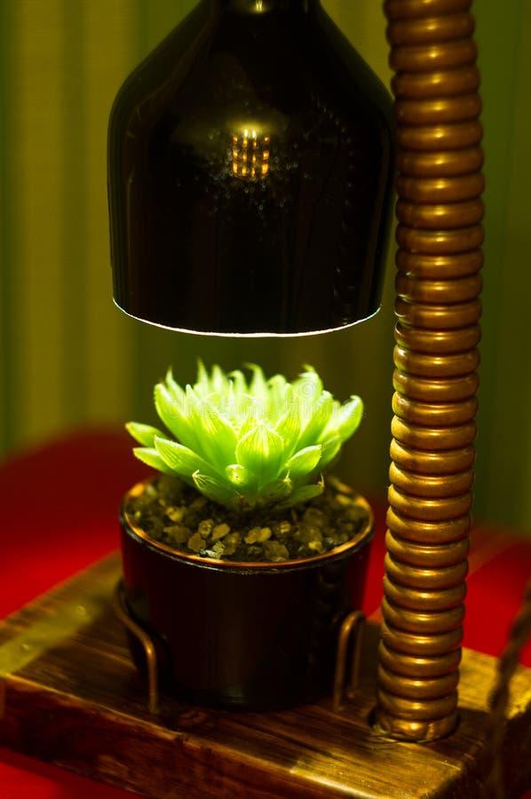 Lampada fatta a mano - corrisponda al vaso di fiore nello stile d'annata immagine stock libera da diritti