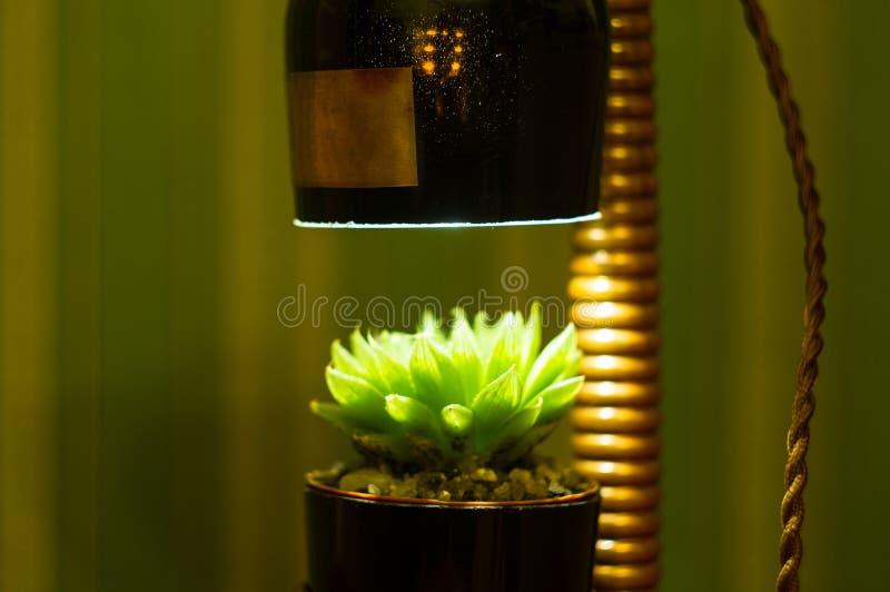 Lampada fatta a mano - corrisponda al vaso di fiore nello stile d'annata immagini stock libere da diritti