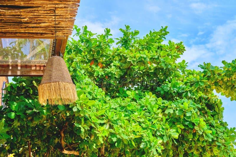 Lampada rustica a paglia decorativa al bar o al negozio con una bellissima vegetazione Vacanza, via, concetto di uscita estiva fotografie stock
