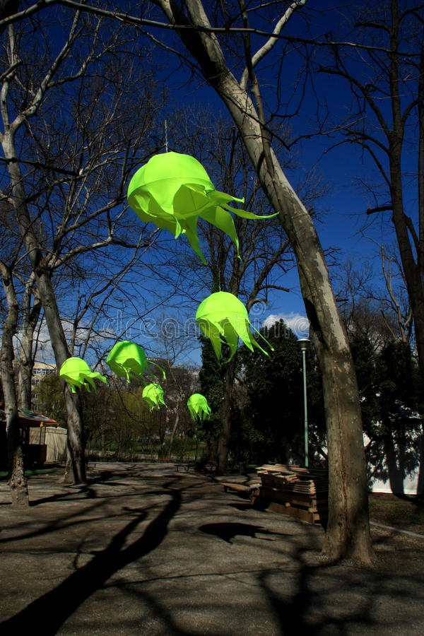 Lampada verde fotografia stock libera da diritti