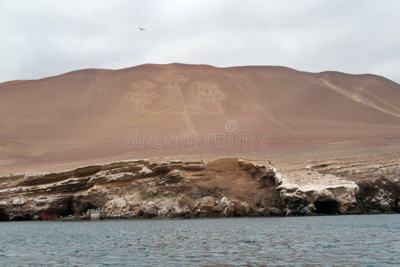Lampadari delle Ande immagini stock libere da diritti