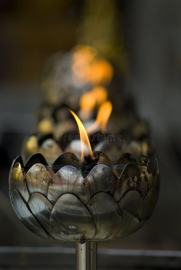Lampade di olio del loto fotografie stock libere da diritti