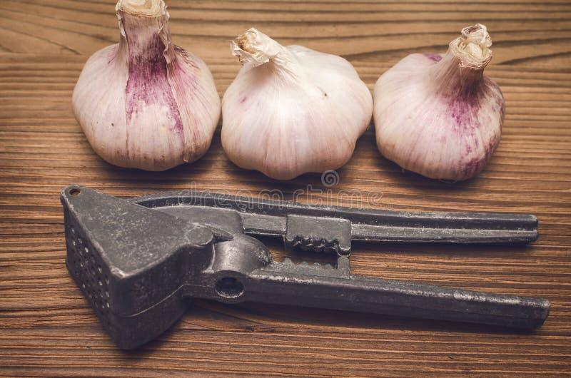 Lampadina dell'aglio e stampa di aglio fotografie stock libere da diritti
